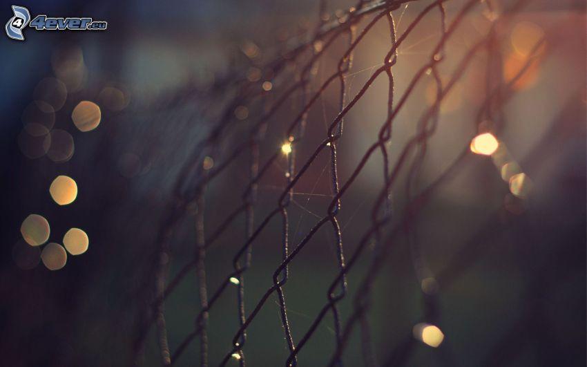 drôtený plot