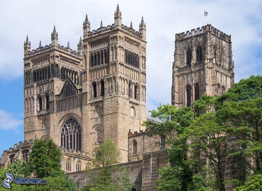 Durhamská katedrála, stromy, veže