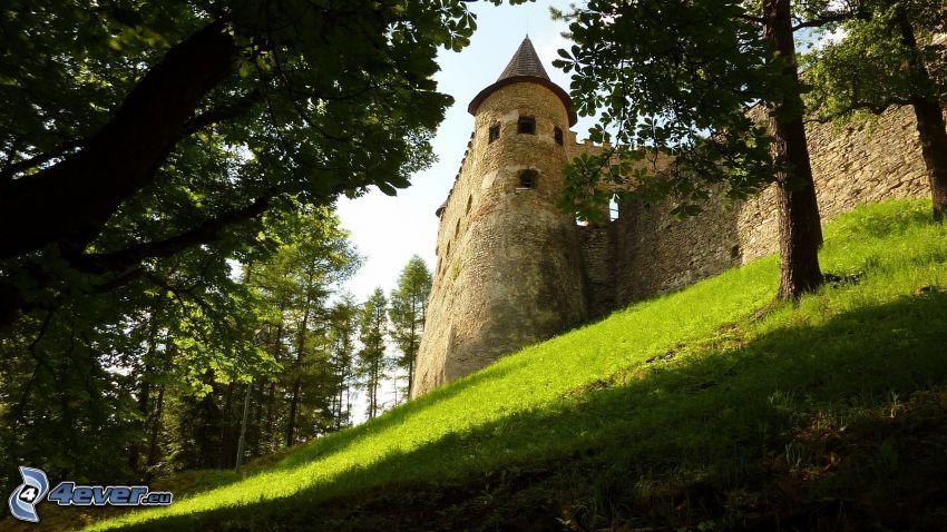 Eltz Castle, zeleň, veža