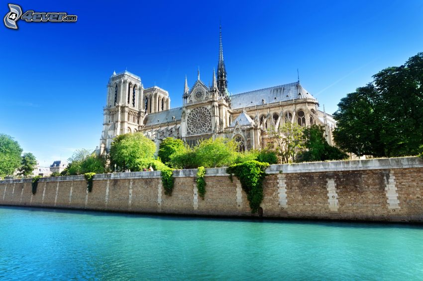 Notre Dame, Seina, HDR