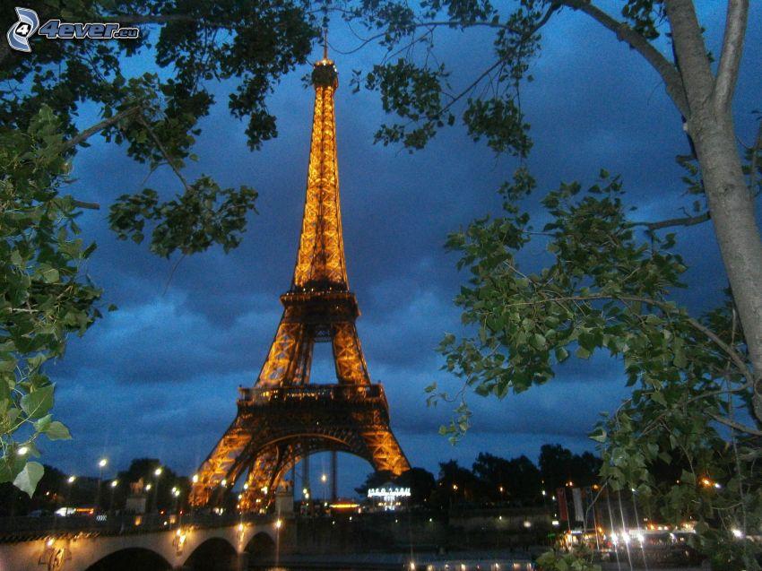 rozsvietená Eiffelova veža, Paríž, Francúzsko, stromy