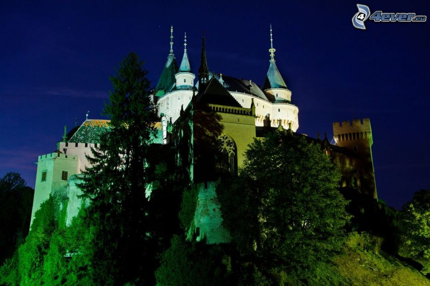 zámok Bojnice, noc, stromy