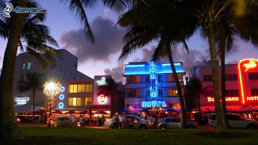 Miami, palmy, večer, osvetlený dom