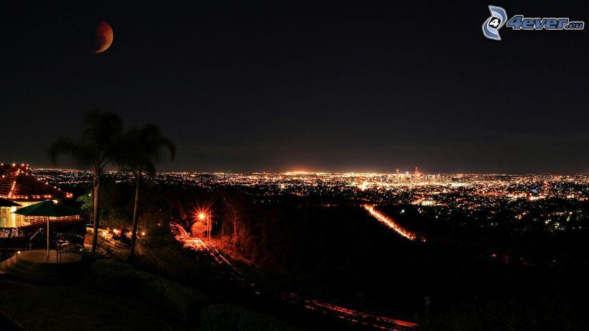 nočné mesto, palmy