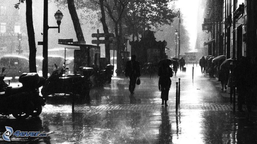 ulica, dážď