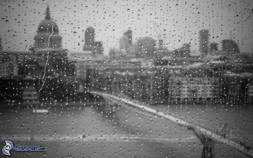 zarosené sklo, mesto, čiernobiela fotka