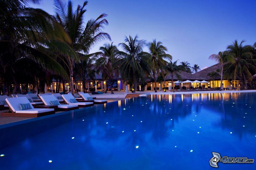 bazén, lehátka, palmy