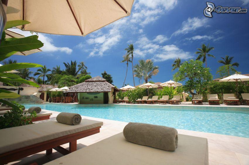 bazén, luxusný dom, palmy, lehátka