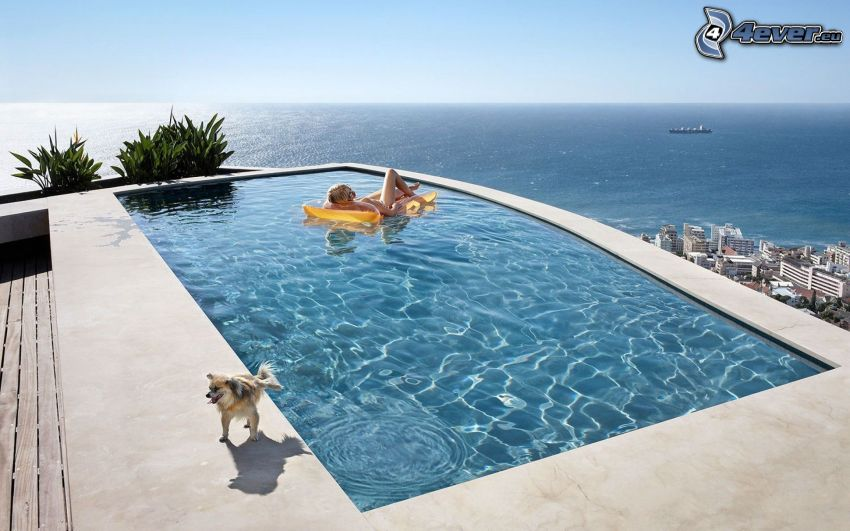bazén, výhľad na more, nafukovačka, pes, žena v bazéne