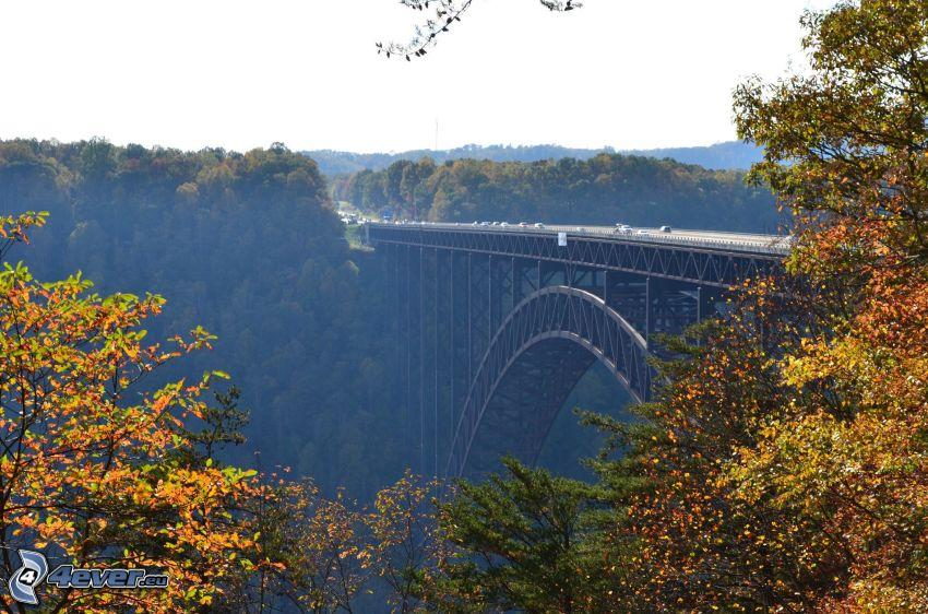 New River Gorge Bridge, farebné jesenné stromy, les