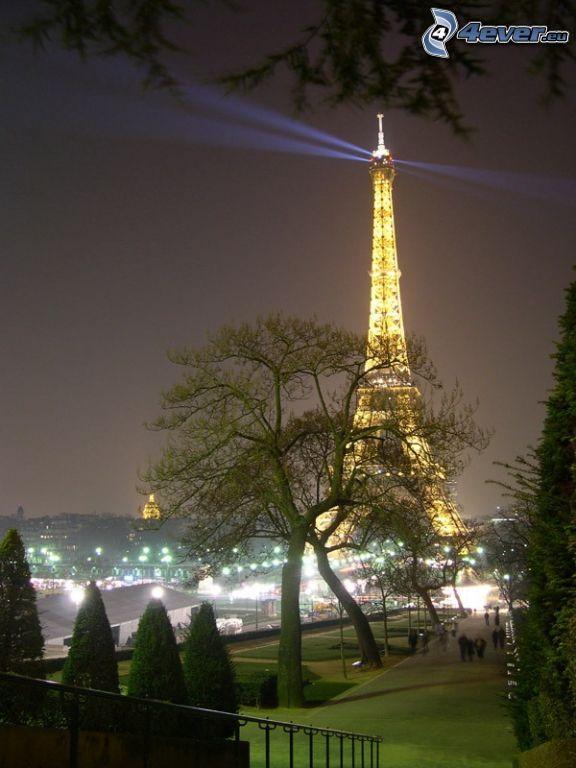 rozsvietená Eiffelova veža, park, stromy, nočné mesto