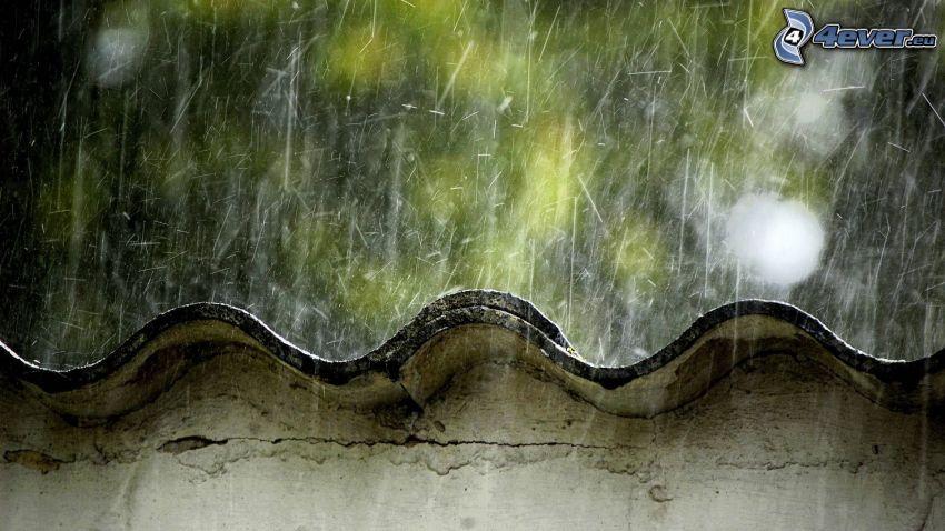 strecha, dážď