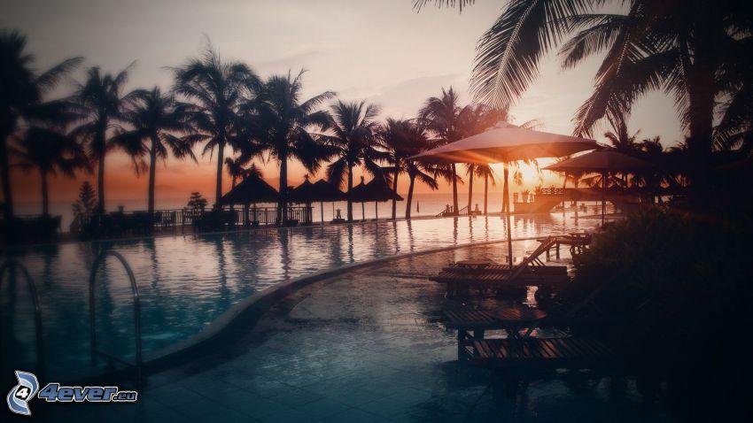 západ slnka za palmami, bazén, slnečníky