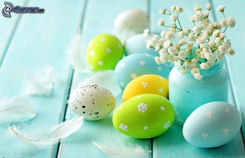 veľkonočné vajíčka, kvety vo váze, pierka