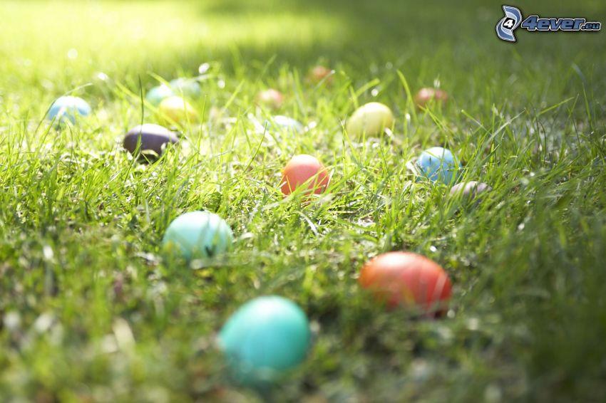 veľkonočné vajíčka v tráve