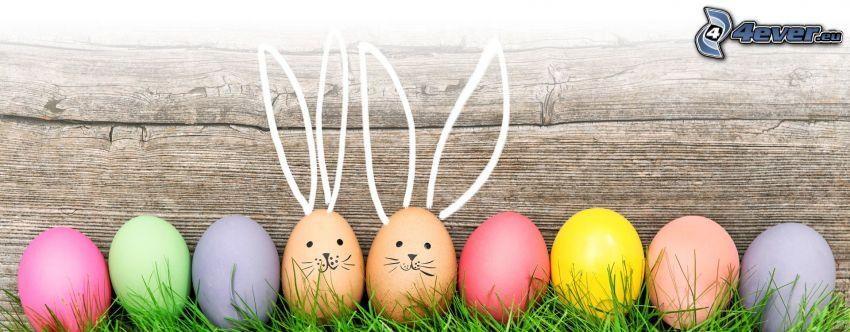 veľkonočný zajac, veľkonočné vajíčka