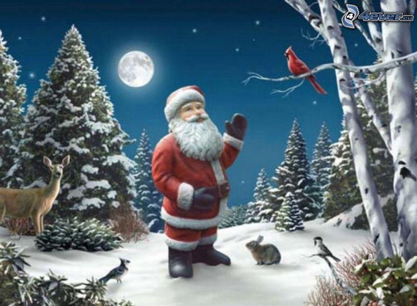 Dedo Mráz, les, zvieratá, ihličnaté stromy, mesiac, sneh