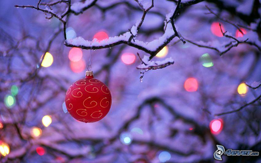 vianočná guľa, farebné svetlá, zasnežený konár