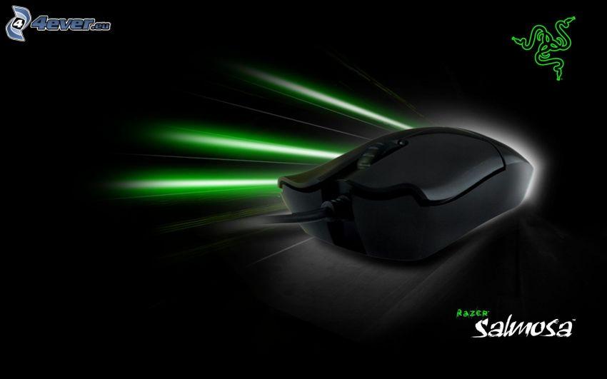 Razer Salmosa, myš