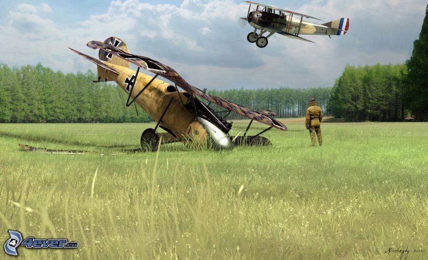 Historické lietadlá, les, lúka