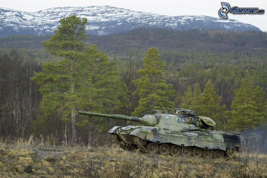 tank, stromy, zasnežený kopec