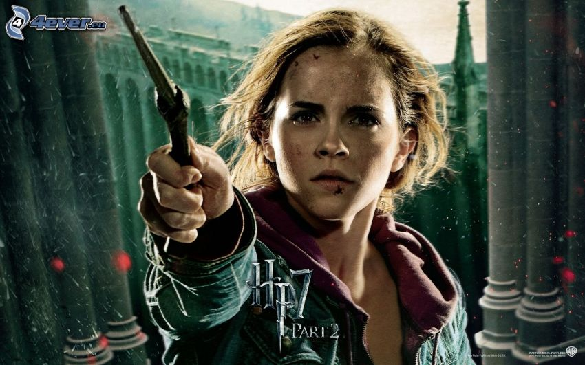 Hermiona, Harry Potter