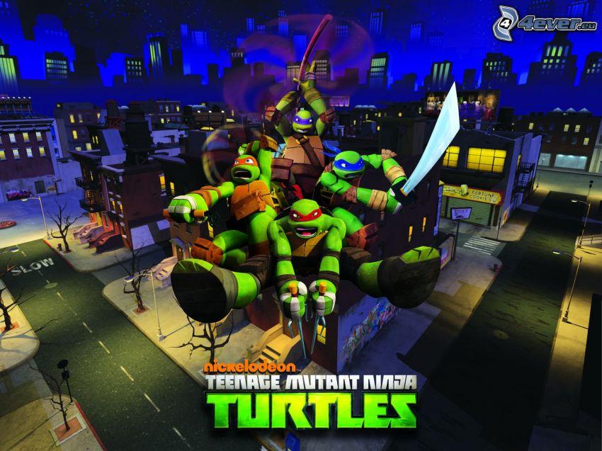 ninja korytnačky, nočné mesto
