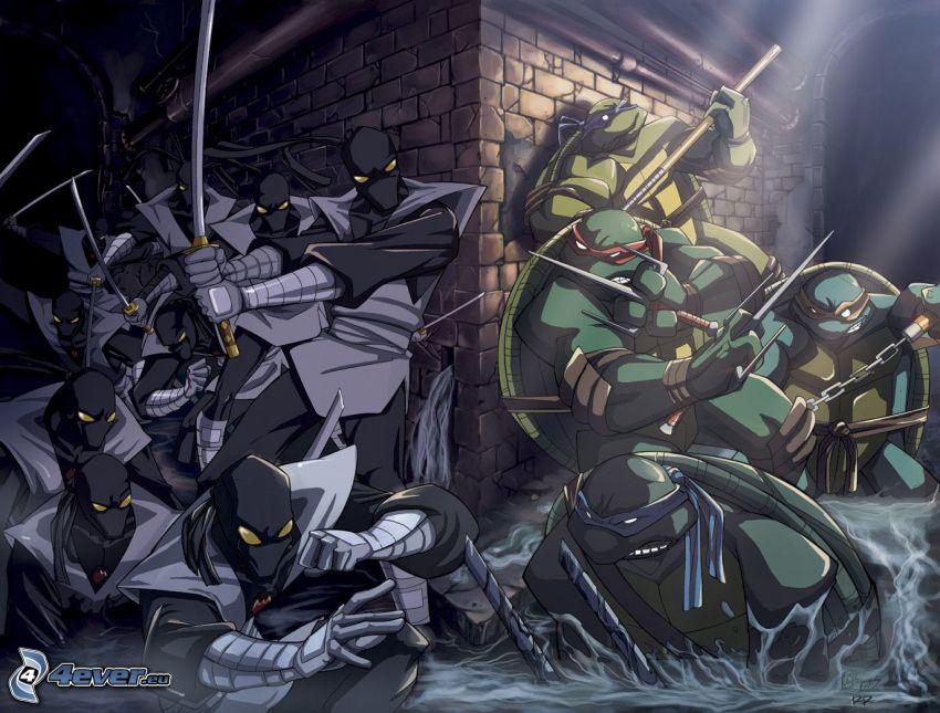 ninja korytnačky