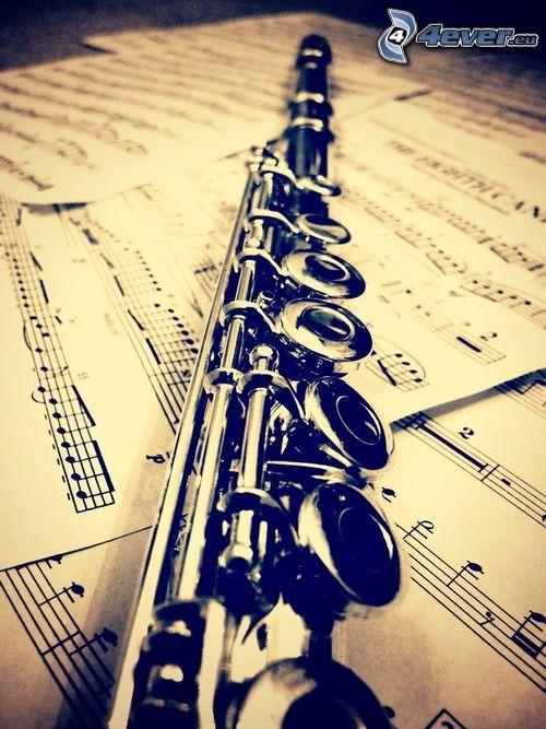 flauta, noty