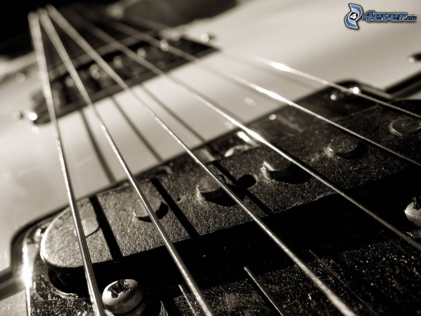 gitara, struny, čiernobiela fotka