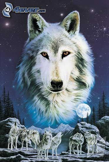 kreslený vlk, vlky, mesiac, stromy, skaly