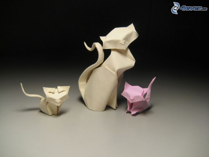 origami, mačky