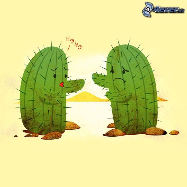 kaktusy, láska, objatie