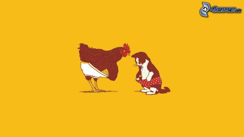 sliepka, mačka, nohavičky