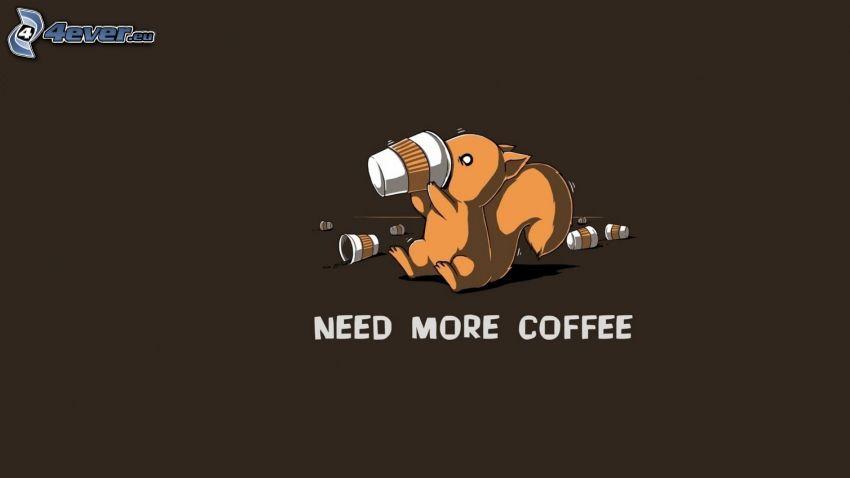 veverička, káva