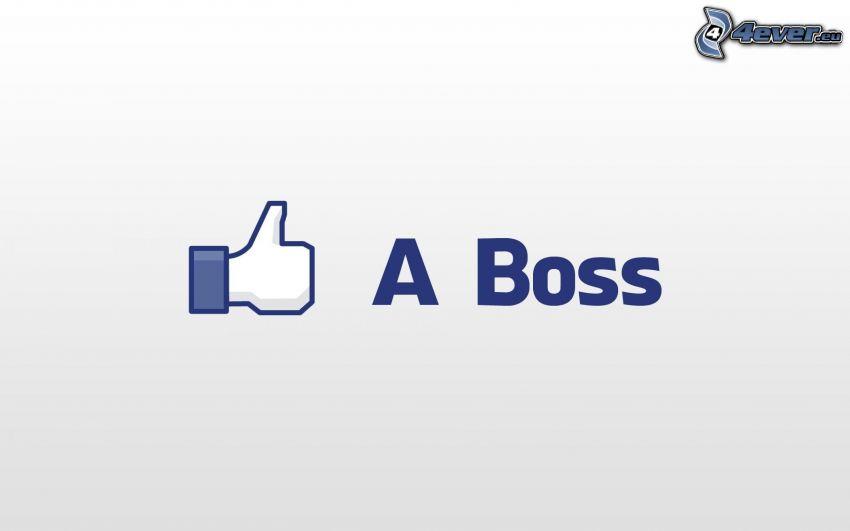 Like A Boss, facebook