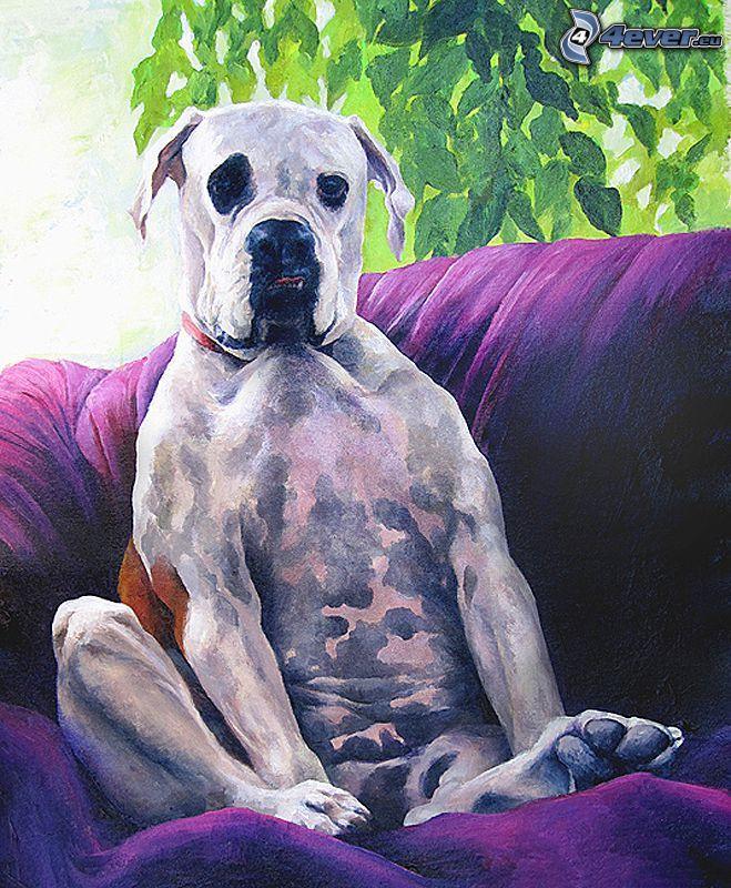 pes na sedačke, kreslené