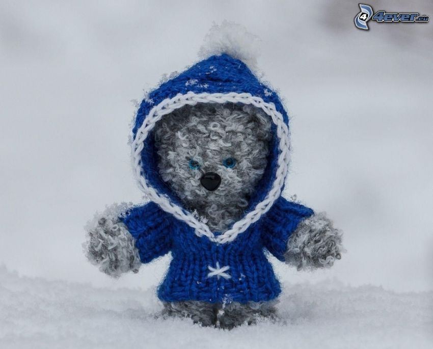 plyšový medvedík, sveter, sneh