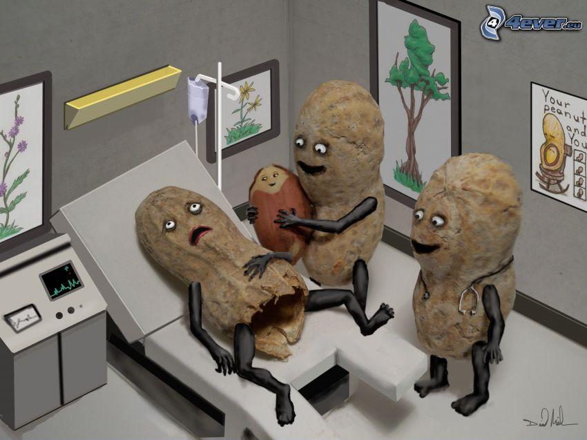 pôrod, arašidy