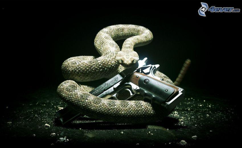 Hitman, had, pištoľ