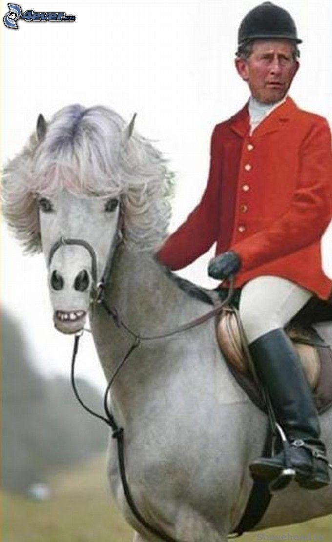 kôň, princ Charles