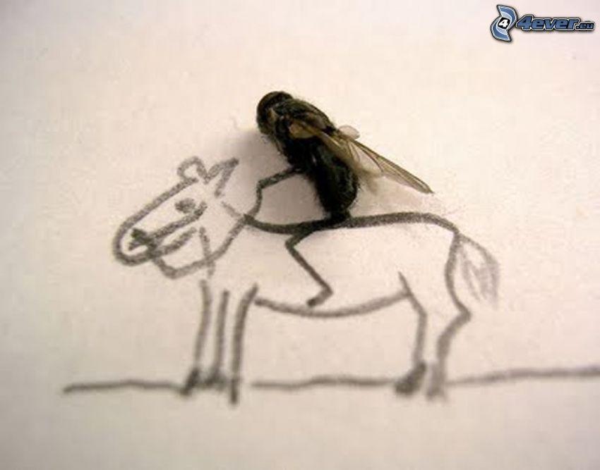 mucha, kôň, kreslené