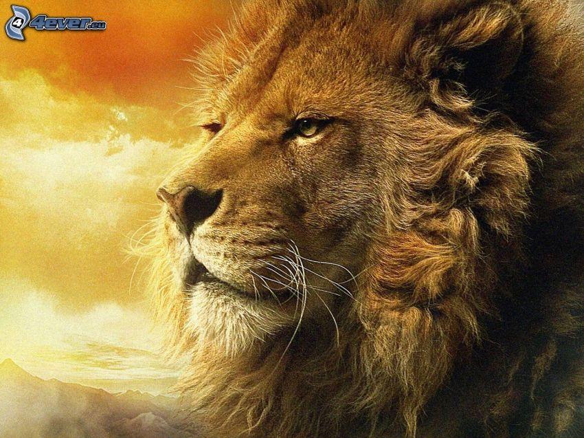 Aslan, Narnia, lev, hriva
