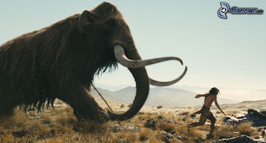 mamut, človek, beh