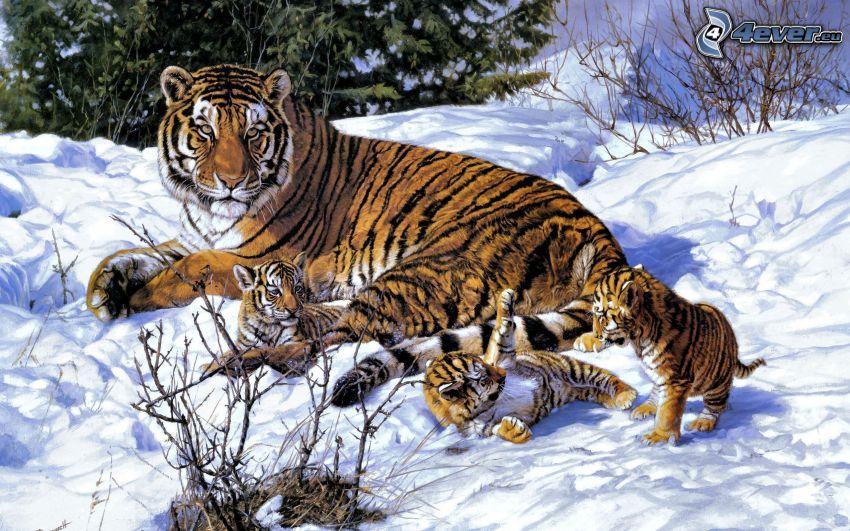 tiger, malé tigríčatá, sneh