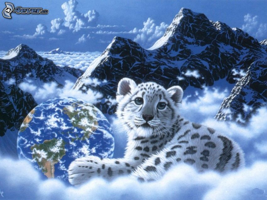 tiger, mláďa, hory