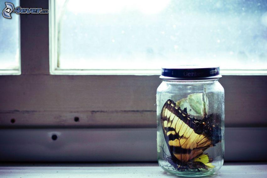 motýle, pohár