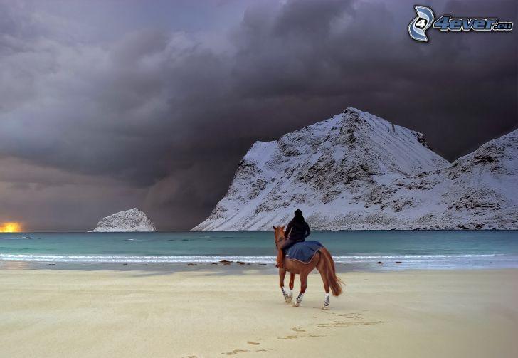 kôň na pláži, hnedý kôň, jazdec, piesočná pláž, zasnežené kopce, búrkové mraky