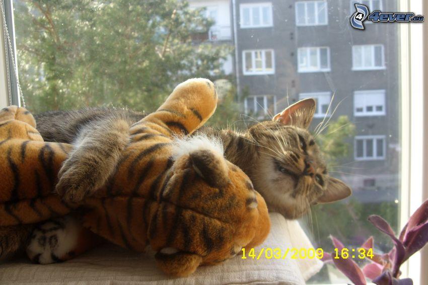 mačka, tiger, plyšová hračka, objatie