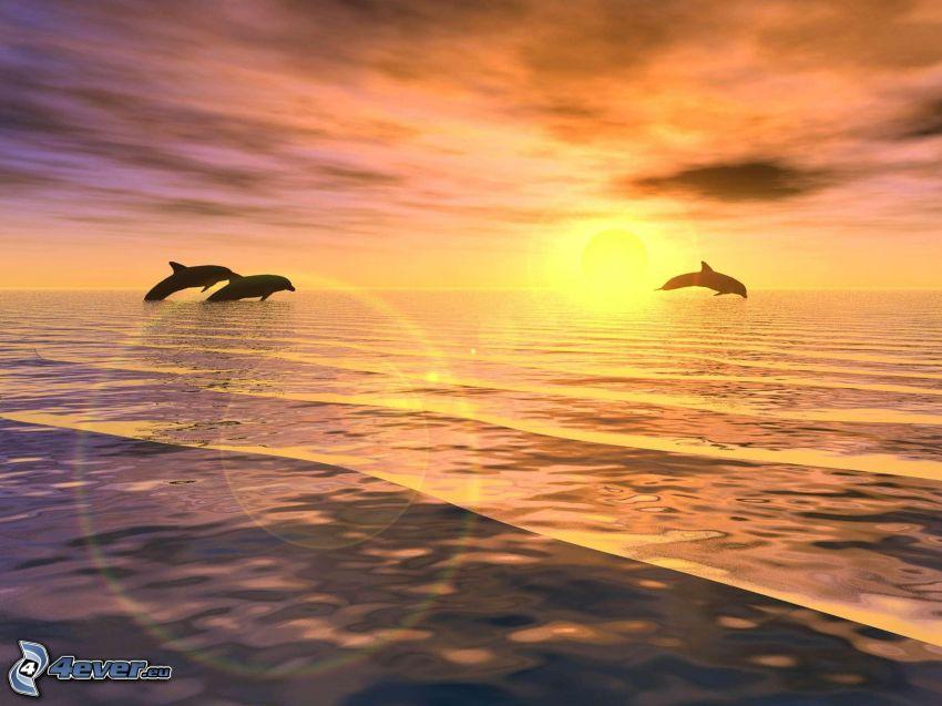 skákajúce delfíny, západ slnka za morom, siluety zvierat